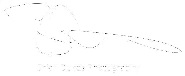 BDukes-Signature-small-white.png